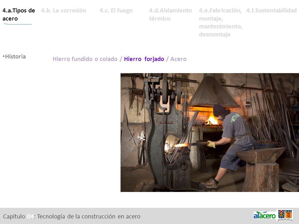 Capítulo 04: Tecnología de la construcción en acero 4.a.Tipos de acero Metales ricos. Historia Composición química. Estabilidad. 4.d.Aislamiento térmi