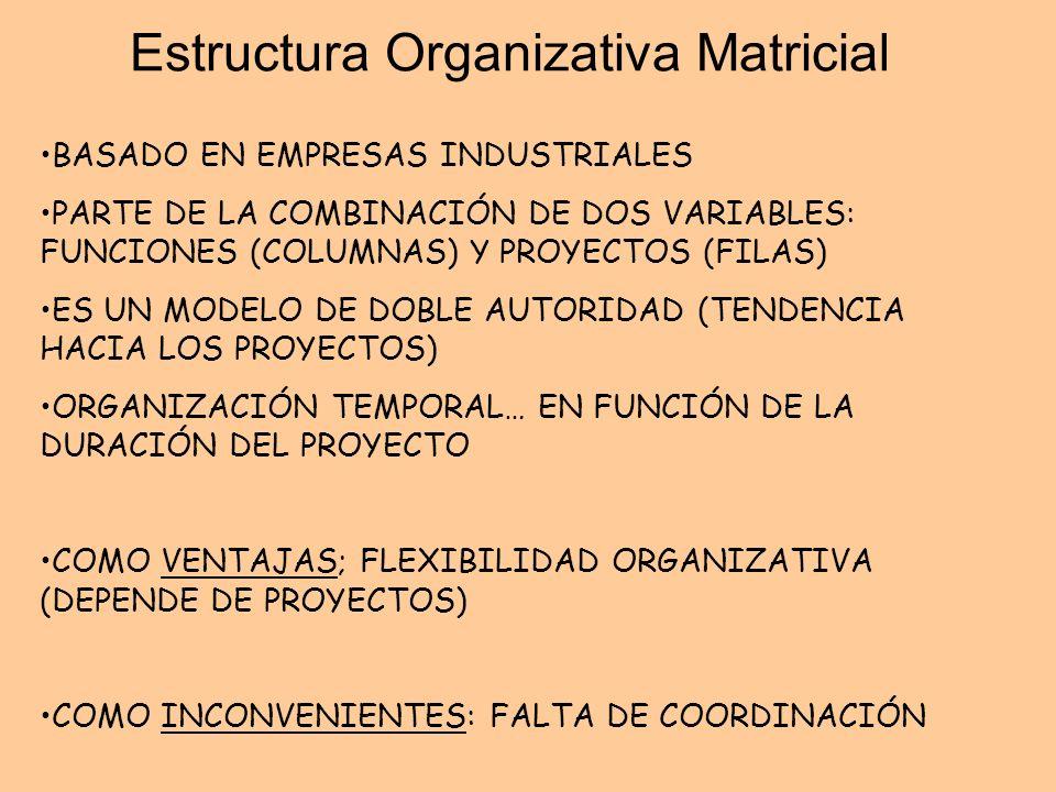 Estructura Organizativa Matricial BASADO EN EMPRESAS INDUSTRIALES PARTE DE LA COMBINACIÓN DE DOS VARIABLES: FUNCIONES (COLUMNAS) Y PROYECTOS (FILAS) E
