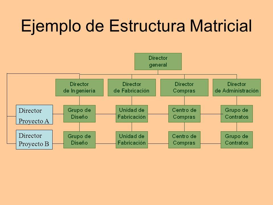 Ejemplo de Estructura Matricial Director Proyecto A Director Proyecto B