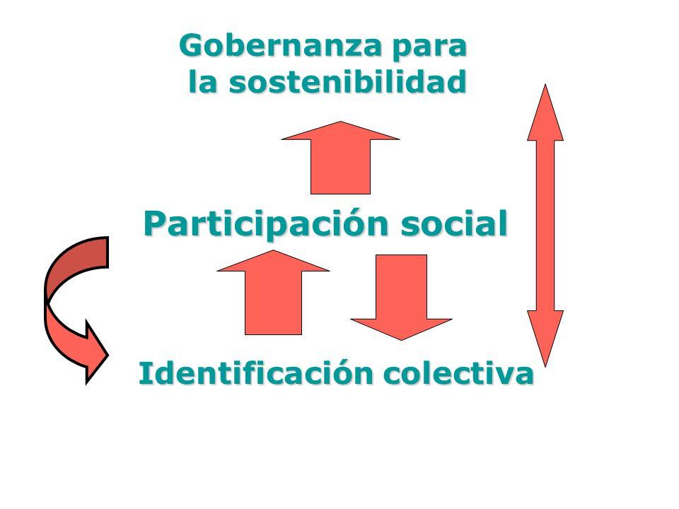 Gobernanza para la sostenibilidad Participación social Identificación colectiva