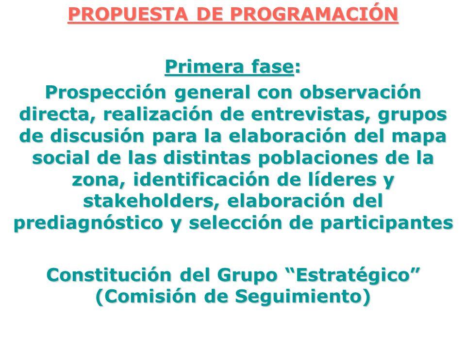 PROPUESTA DE PROGRAMACIÓN Primera fase: Prospección general con observación directa, realización de entrevistas, grupos de discusión para la elaboraci