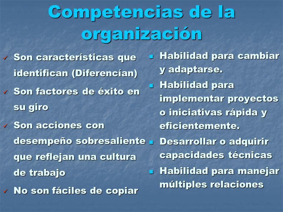Competencias de la organización Habilidad para cambiar y adaptarse. Habilidad para cambiar y adaptarse. Habilidad para implementar proyectos o iniciat