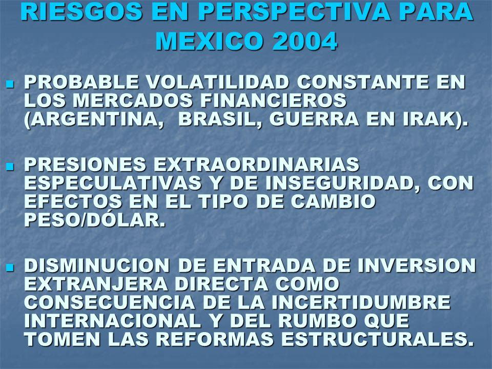 RIESGOS EN PERSPECTIVA PARA MEXICO 2004 PROBABLE VOLATILIDAD CONSTANTE EN LOS MERCADOS FINANCIEROS (ARGENTINA, BRASIL, GUERRA EN IRAK). PROBABLE VOLAT