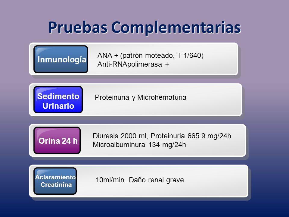 Inmunología ANA + (patrón moteado, T 1/640) Anti-RNApolimerasa + Sedimento Urinario Proteinuria y Microhematuria Orina 24 h Diuresis 2000 ml, Proteinu