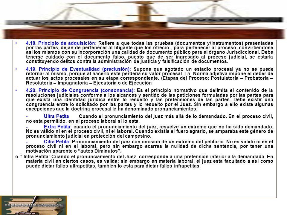 4. Principales Principios Procesales en el Proceso Civil. 4.18. Principio de adquisición: Refiere a que todas las pruebas (documentos y/instrumentos)