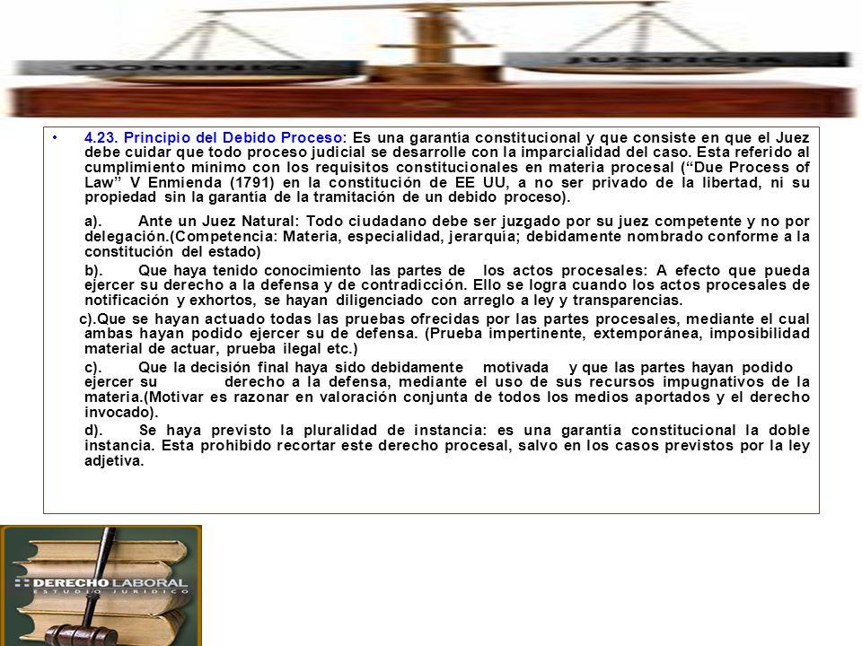 4. Principales Principios Procesales en el Proceso Civil. 4.23. Principio del Debido Proceso: Es una garantía constitucional y que consiste en que el