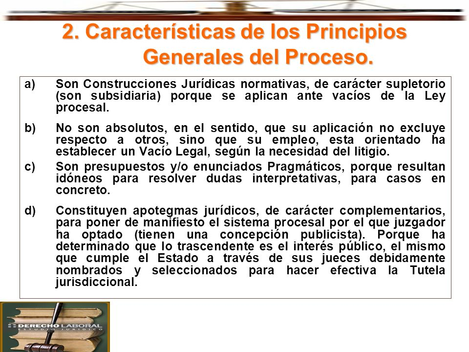 2. Características de los Principios Generales del Proceso. a) Son Construcciones Jurídicas normativas, de carácter supletorio (son subsidiaria) porqu