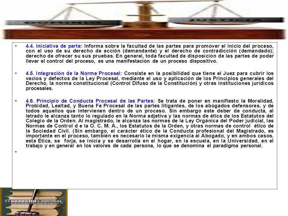 4. Principales Principios Procesales en el Proceso Civil. 4.4. Iniciativa de parte: Informa sobre la facultad de las partes para promover el inicio de