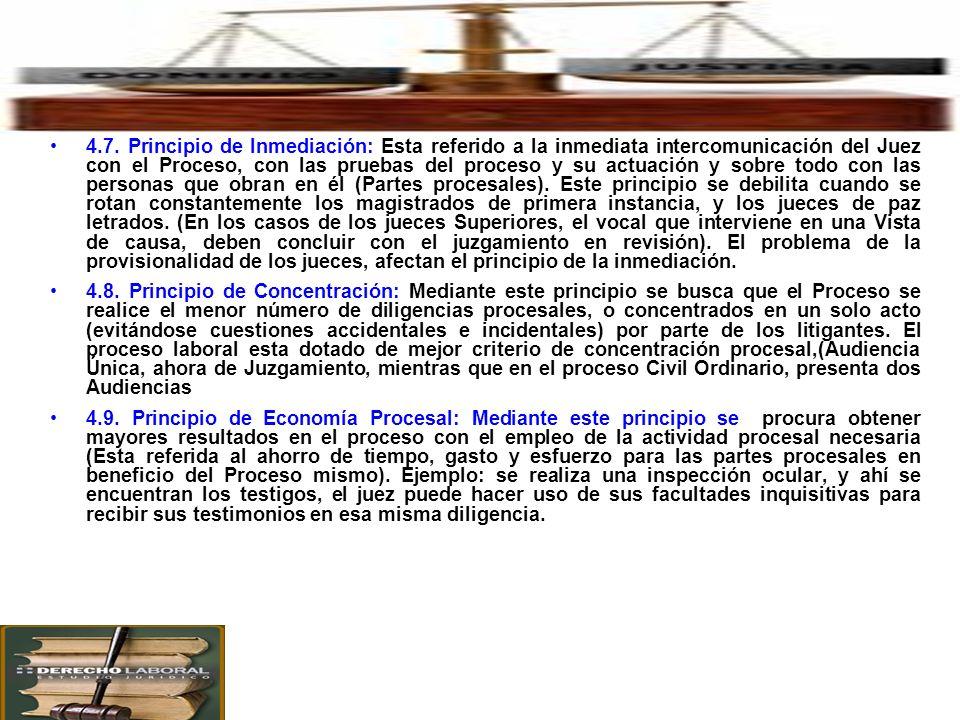 4. Principales Principios Procesales en el Proceso Civil. 4.7. Principio de Inmediación: Esta referido a la inmediata intercomunicación del Juez con e