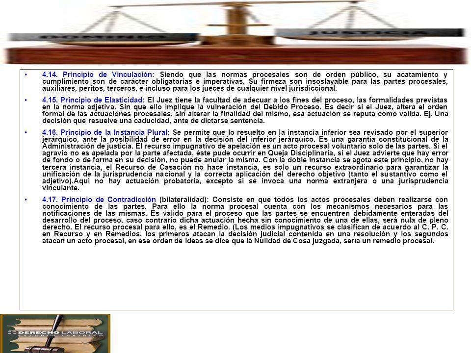 4. Principales Principios Procesales en el Proceso Civil. 4.14. Principio de Vinculación: Siendo que las normas procesales son de orden público, su ac