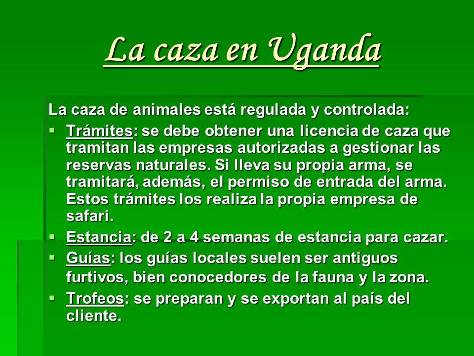 La caza en Uganda La caza de animales está regulada y controlada: Trámites: se debe obtener una licencia de caza que tramitan las empresas autorizadas