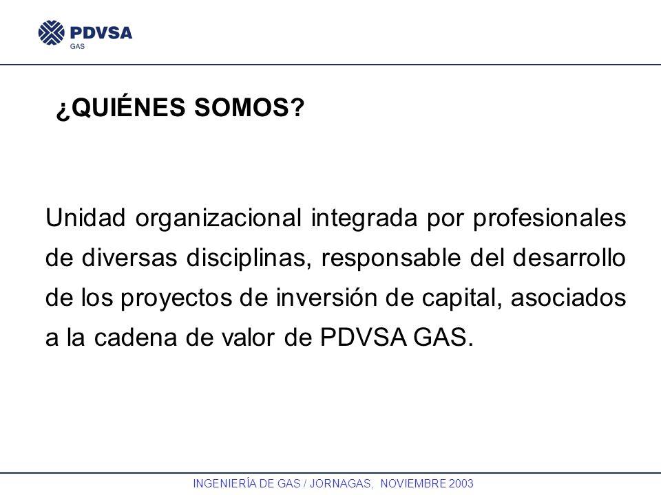 GAS INGENIERÍA DE GAS / JORNAGAS, NOVIEMBRE 2003 Unidad organizacional integrada por profesionales de diversas disciplinas, responsable del desarrollo