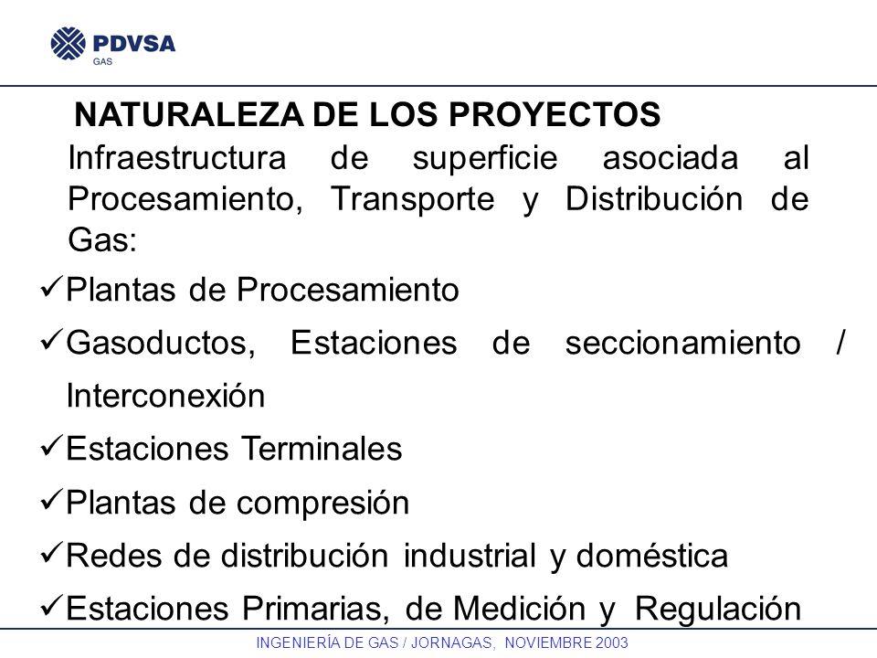 GAS INGENIERÍA DE GAS / JORNAGAS, NOVIEMBRE 2003 Infraestructura de superficie asociada al Procesamiento, Transporte y Distribución de Gas: NATURALEZA