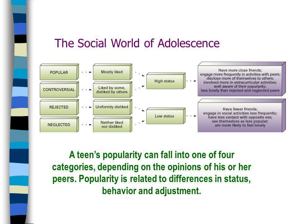 La popularidad y el rechazo se vuelven focos centrales en la vida de los adolescentes ~ La organización social adolescente es compleja ! La categoriza