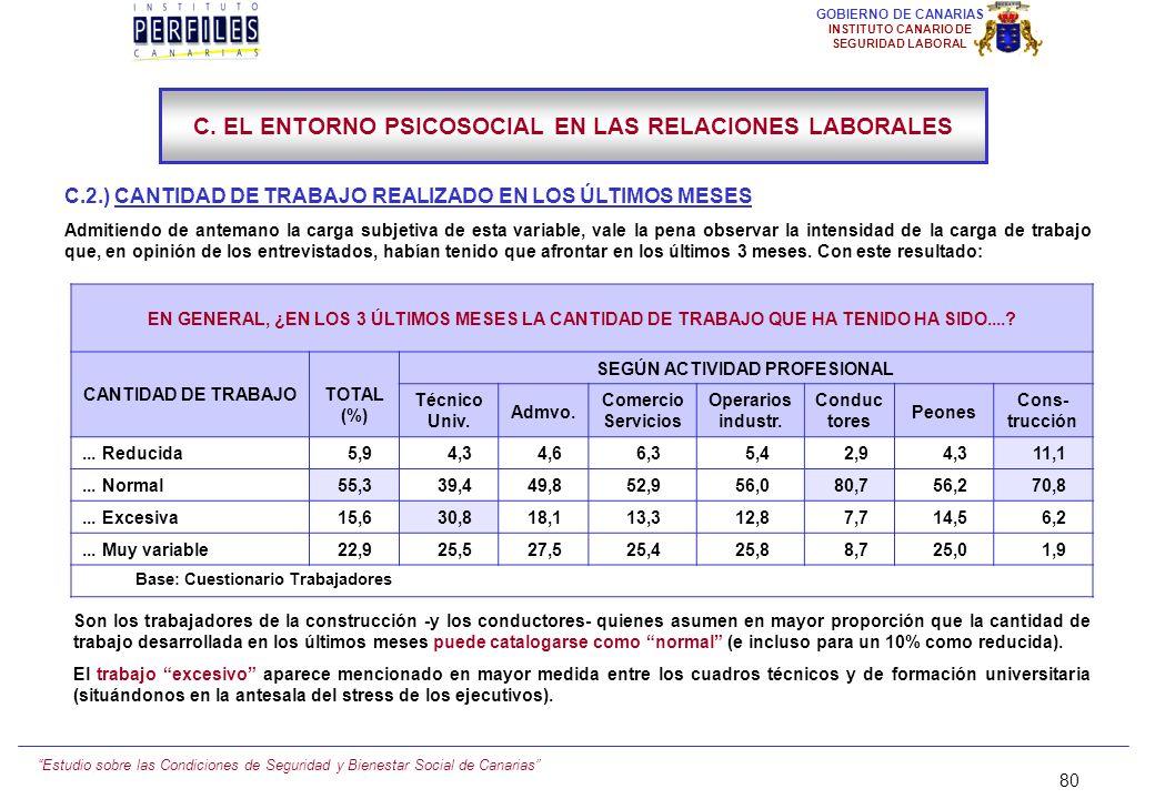 Estudio sobre las Condiciones de Seguridad y Bienestar Social de Canarias 79 GOBIERNO DE CANARIAS INSTITUTO CANARIO DE SEGURIDAD LABORAL C. EL ENTORNO