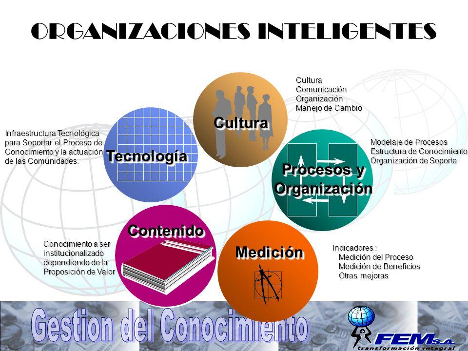 TecnologíaTecnología Procesos y Organización Organización CulturaCultura ContenidoContenido Modelaje de Procesos Estructura de Conocimiento Organizaci