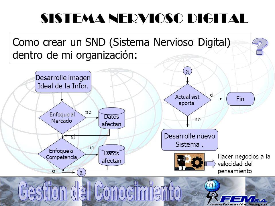 SISTEMA NERVIOSO DIGITAL Como crear un SND (Sistema Nervioso Digital) dentro de mi organización: Desarrolle imagen Ideal de la Infor. Enfoque al Merca