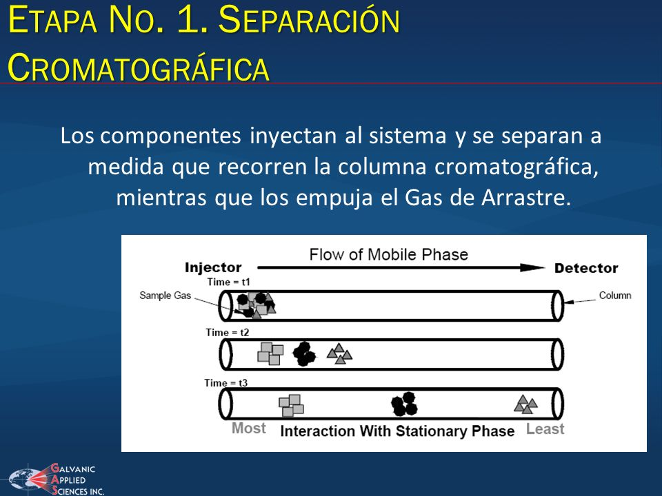 E TAPA N O. 1. S EPARACIÓN C ROMATOGRÁFICA Los componentes inyectan al sistema y se separan a medida que recorren la columna cromatográfica, mientras