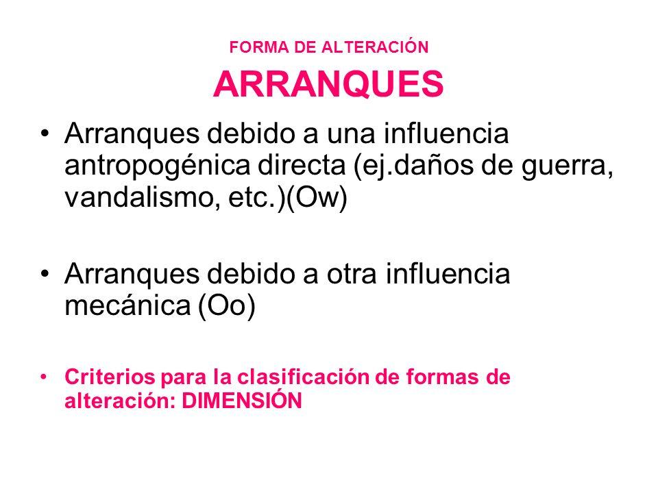 FORMA DE ALTERACIÓN ARRANQUES Arranques debido a una influencia antropogénica directa (ej.daños de guerra, vandalismo, etc.)(Ow) Arranques debido a ot
