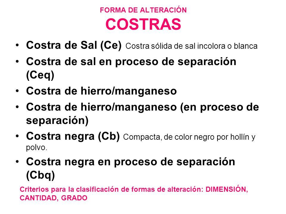 FORMA DE ALTERACIÓN COSTRAS Costra de Sal (Ce) Costra sólida de sal incolora o blanca Costra de sal en proceso de separación (Ceq) Costra de hierro/ma