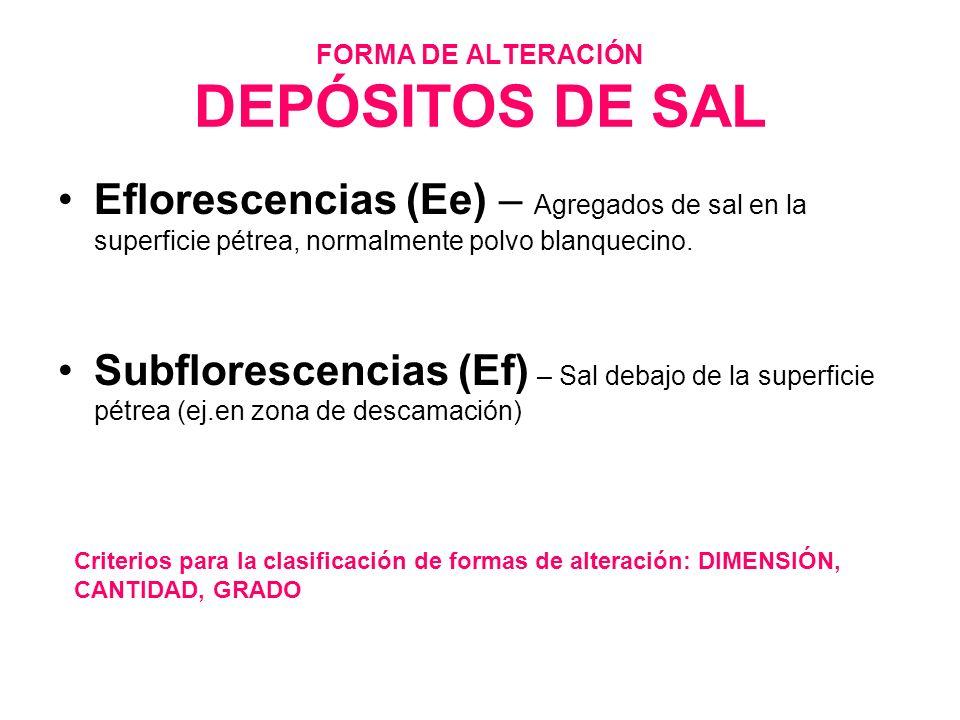 FORMA DE ALTERACIÓN DEPÓSITOS DE SAL Eflorescencias (Ee) – Agregados de sal en la superficie pétrea, normalmente polvo blanquecino. Subflorescencias (
