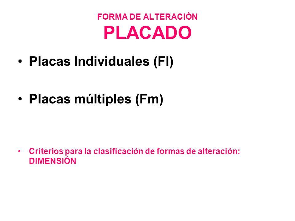 FORMA DE ALTERACIÓN PLACADO Placas Individuales (Fl) Placas múltiples (Fm) Criterios para la clasificación de formas de alteración: DIMENSIÓN