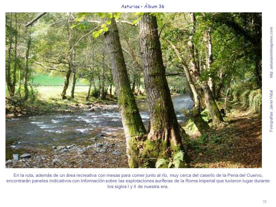 10 Asturias - Álbum 36 Fotografías: Javier Vidal http: asturiasenimagenes.com En la ruta, además de un área recreativa con mesas para comer junto al r