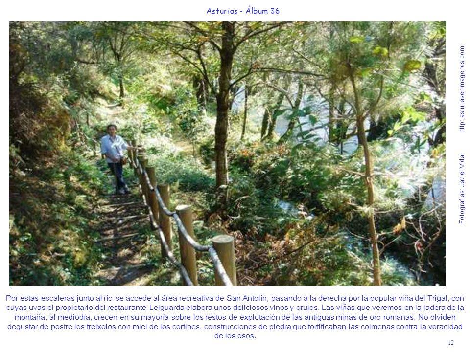 12 Asturias - Álbum 36 Fotografías: Javier Vidal http: asturiasenimagenes.com Por estas escaleras junto al río se accede al área recreativa de San Ant