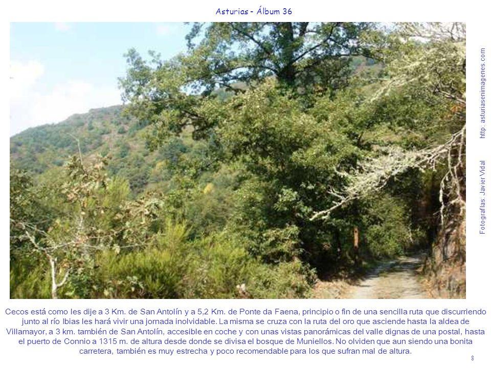 8 Asturias - Álbum 36 Fotografías: Javier Vidal http: asturiasenimagenes.com Cecos está como les dije a 3 Km. de San Antolín y a 5,2 Km. de Ponte da F