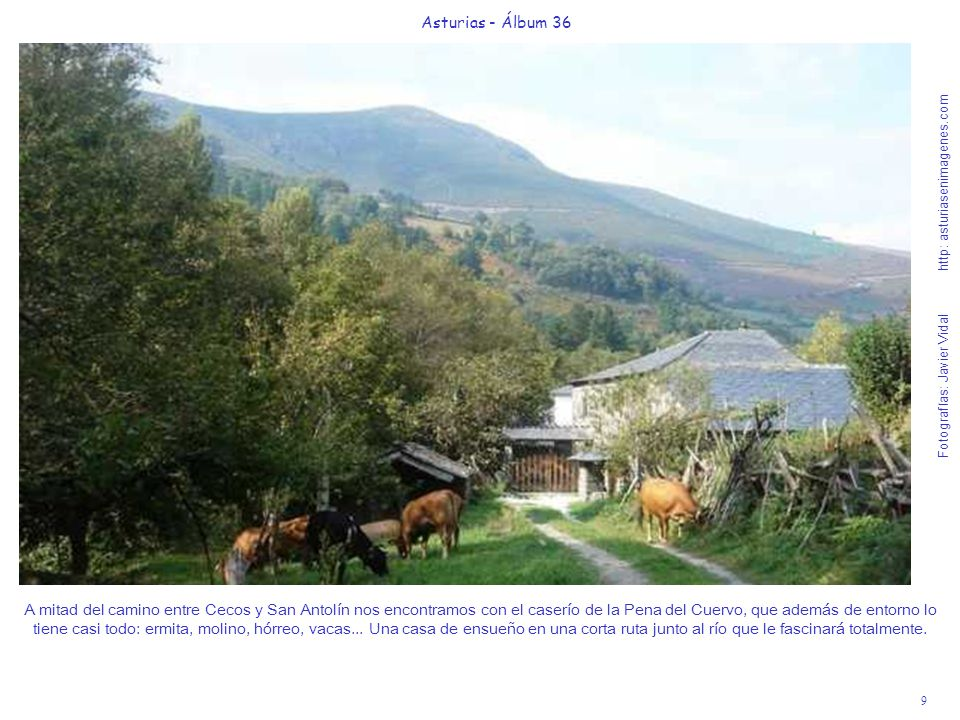 9 Asturias - Álbum 36 Fotografías: Javier Vidal http: asturiasenimagenes.com A mitad del camino entre Cecos y San Antolín nos encontramos con el caser