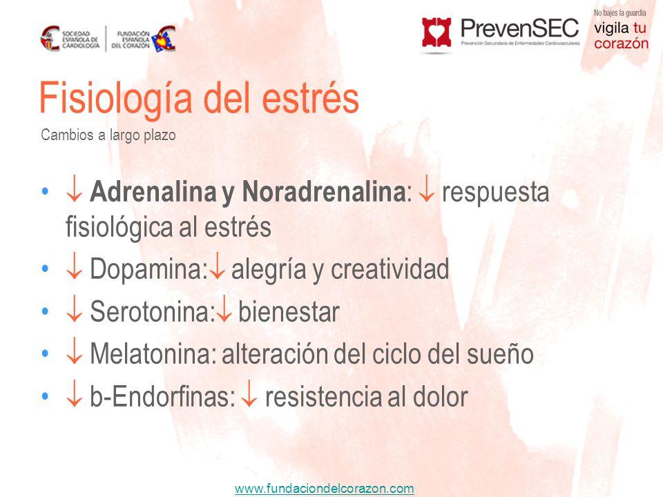 www.fundaciondelcorazon.com Adrenalina y Noradrenalina : respuesta fisiológica al estrés Dopamina: alegría y creatividad Serotonina: bienestar Melaton