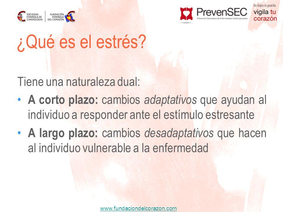 www.fundaciondelcorazon.com Tiene una naturaleza dual: A corto plazo: cambios adaptativos que ayudan al individuo a responder ante el estímulo estresa