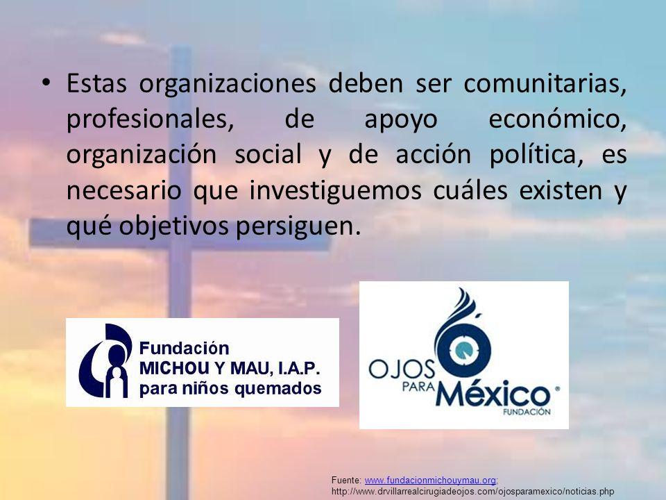 Estas organizaciones deben ser comunitarias, profesionales, de apoyo económico, organización social y de acción política, es necesario que investiguem