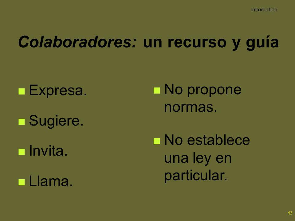 13 Colaboradores: un recurso y guía Expresa. Sugiere. Invita. Llama. No propone normas. No establece una ley en particular. Introduction
