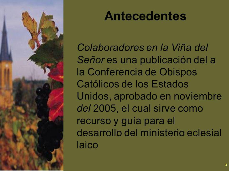 3 Antecedentes Colaboradores en la Viña del Señor es una publicación del a la Conferencia de Obispos Católicos de los Estados Unidos, aprobado en novi