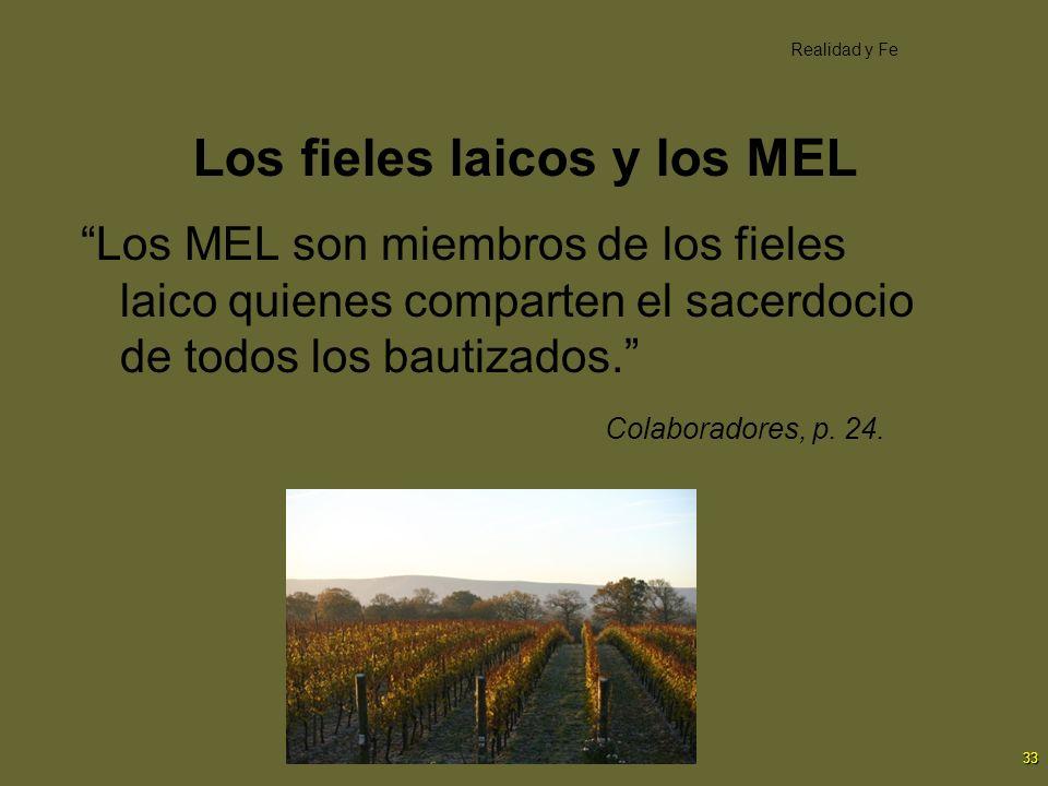 33 Los fieles laicos y los MEL Los MEL son miembros de los fieles laico quienes comparten el sacerdocio de todos los bautizados. Colaboradores, p. 24.