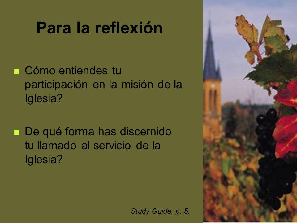 34 Para la reflexión Cómo entiendes tu participación en la misión de la Iglesia? De qué forma has discernido tu llamado al servicio de la Iglesia? Stu