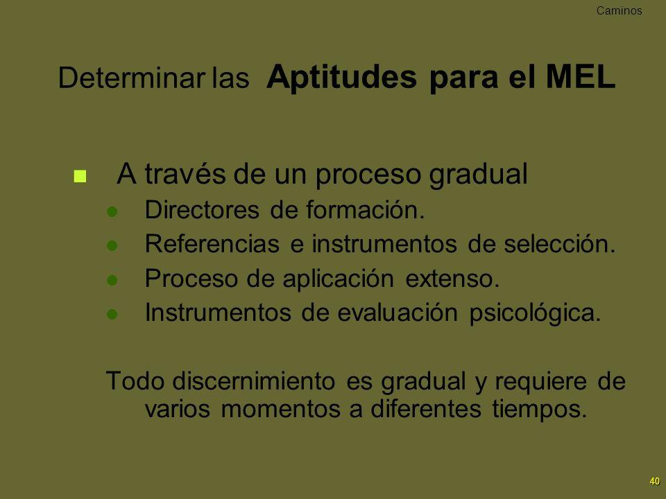 40 Determinar las Aptitudes para el MEL A través de un proceso gradual Directores de formación. Referencias e instrumentos de selección. Proceso de ap