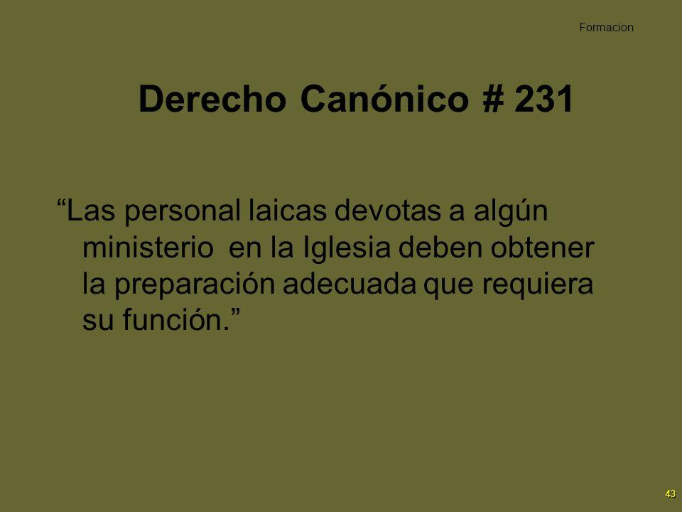 43 Derecho Canónico # 231 Las personal laicas devotas a algún ministerio en la Iglesia deben obtener la preparación adecuada que requiera su función.