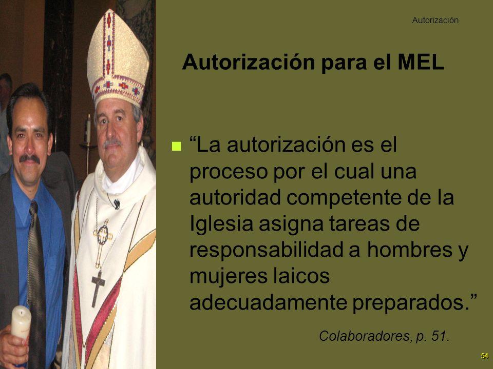 54 La autorización es el proceso por el cual una autoridad competente de la Iglesia asigna tareas de responsabilidad a hombres y mujeres laicos adecua