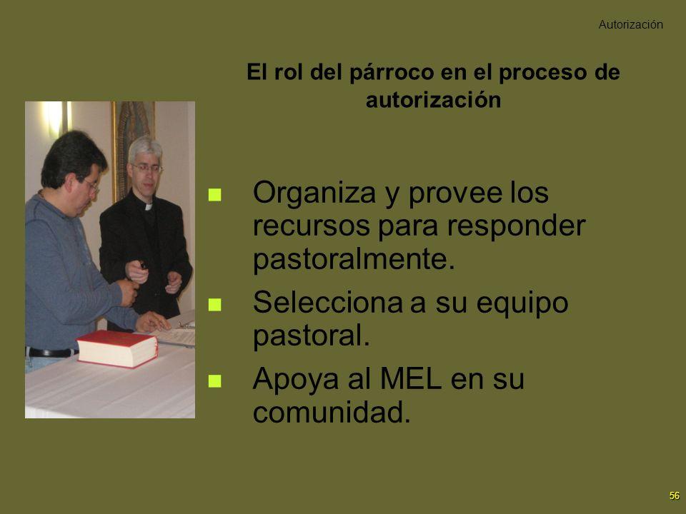 56 El rol del párroco en el proceso de autorización Organiza y provee los recursos para responder pastoralmente. Selecciona a su equipo pastoral. Apoy