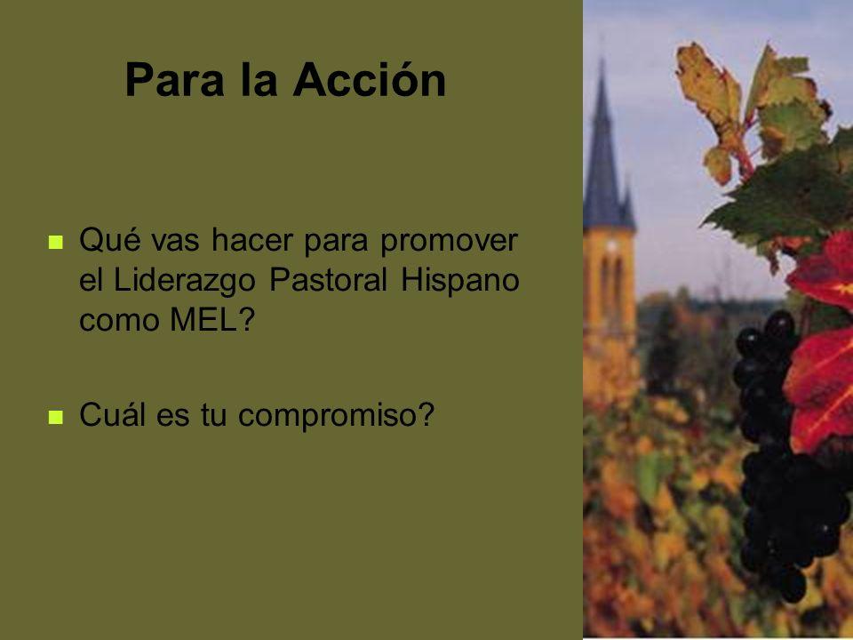 69 Para la Acción Qué vas hacer para promover el Liderazgo Pastoral Hispano como MEL? Cuál es tu compromiso?