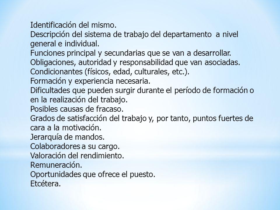 Identificación del mismo. Descripción del sistema de trabajo del departamento a nivel general e individual. Funciones principal y secundarias que se v