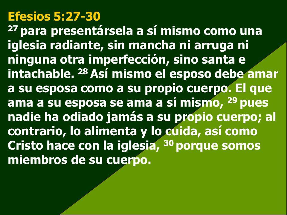 Efesios 5:27-30 27 para presentársela a sí mismo como una iglesia radiante, sin mancha ni arruga ni ninguna otra imperfección, sino santa e intachable