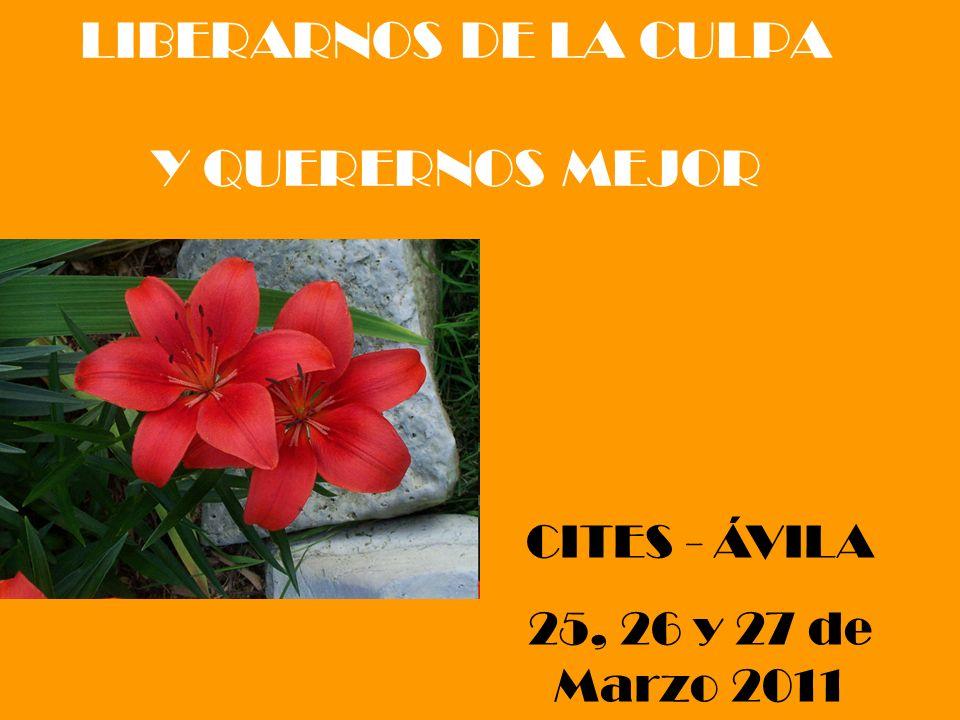 LIBERARNOS DE LA CULPA Y QUERERNOS MEJOR CITES - ÁVILA 25, 26 y 27 de Marzo 2011