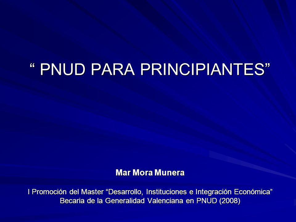 INDICE 1.LA ONU 2. EL PNUD 3. EL PROGRAMA ART-PAPDEL MOZAMBIQUE 4.