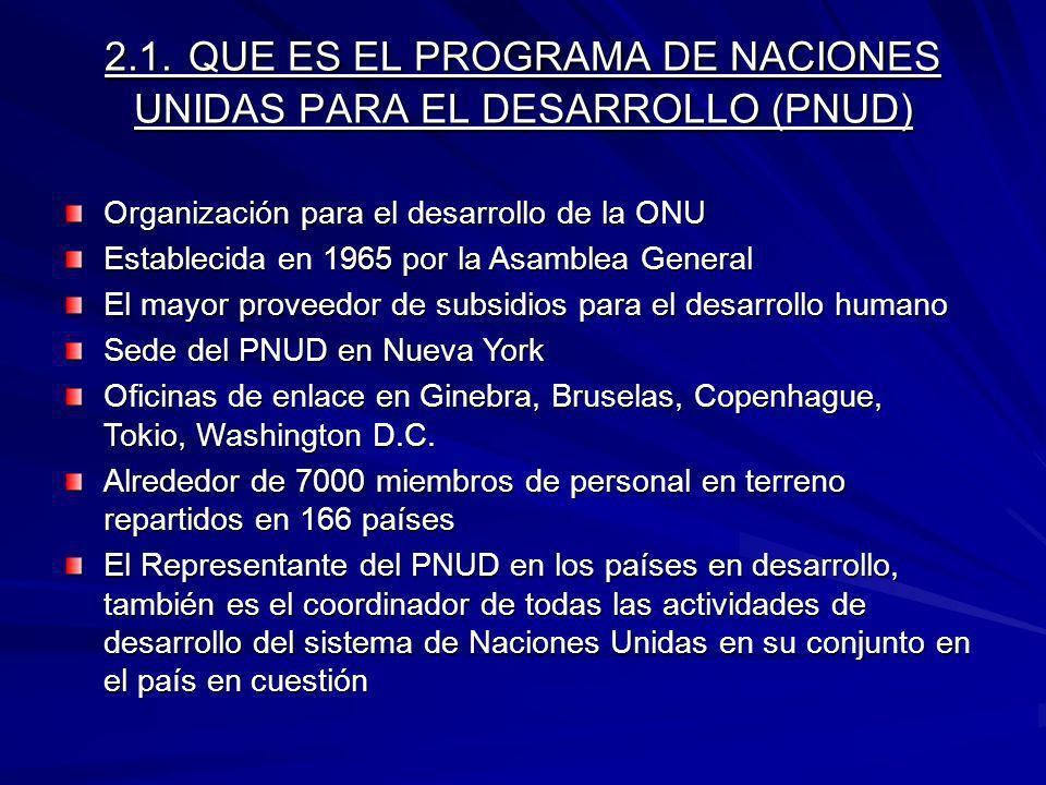 2.2.QUE PRETENDE CONSEGUIR EL PNUD.