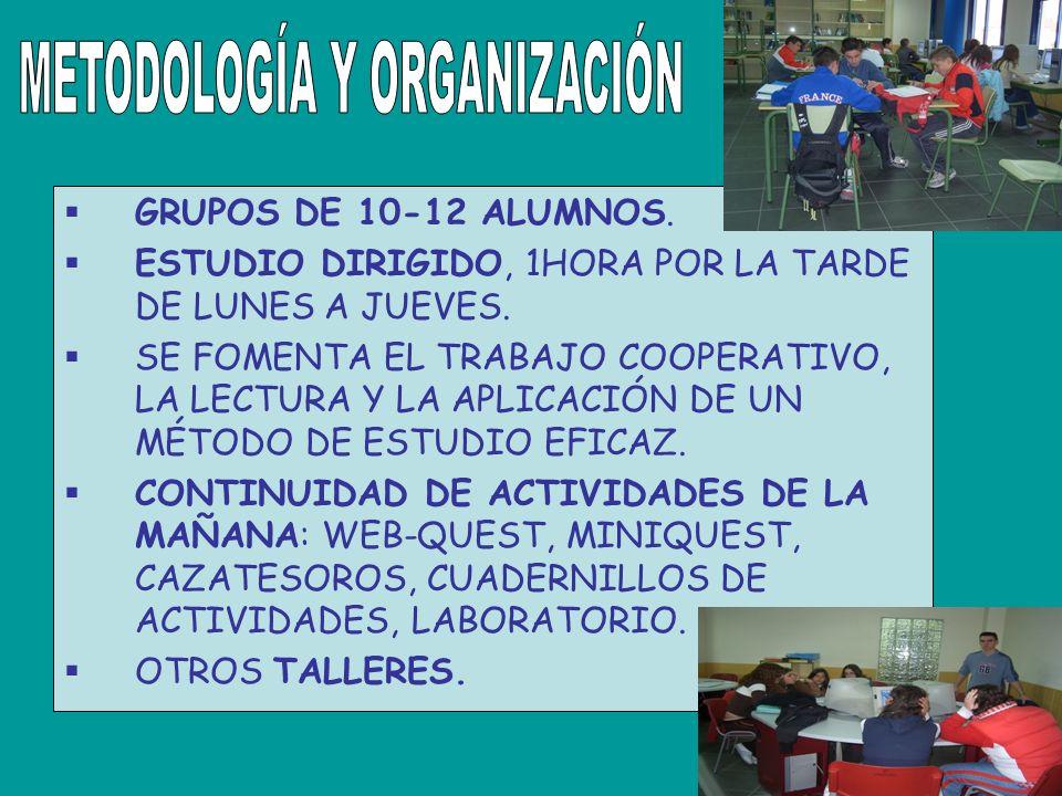 GRUPOS DE 10-12 ALUMNOS. ESTUDIO DIRIGIDO, 1HORA POR LA TARDE DE LUNES A JUEVES.