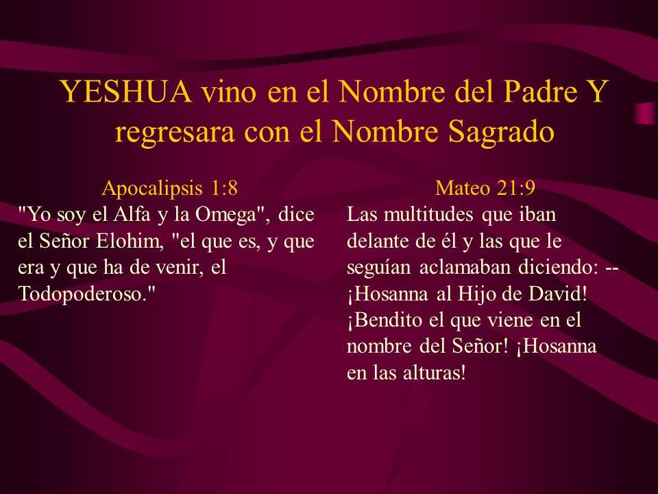 YESHUA vino en el Nombre del Padre Y regresara con el Nombre Sagrado Apocalipsis 1:8