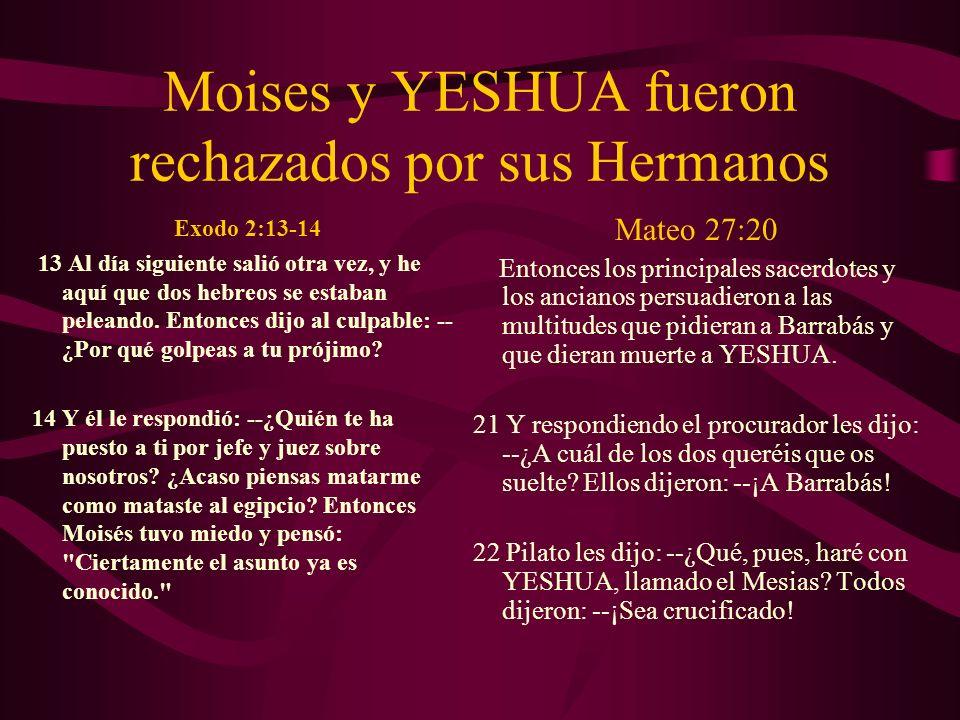 Moises y YESHUA fueron rechazados por sus Hermanos Exodo 2:13-14 13 Al día siguiente salió otra vez, y he aquí que dos hebreos se estaban peleando. En